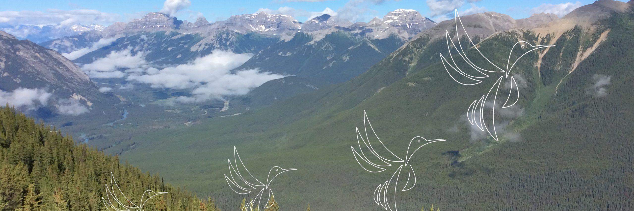 Birds taking flight - mountainscape in British Columbia